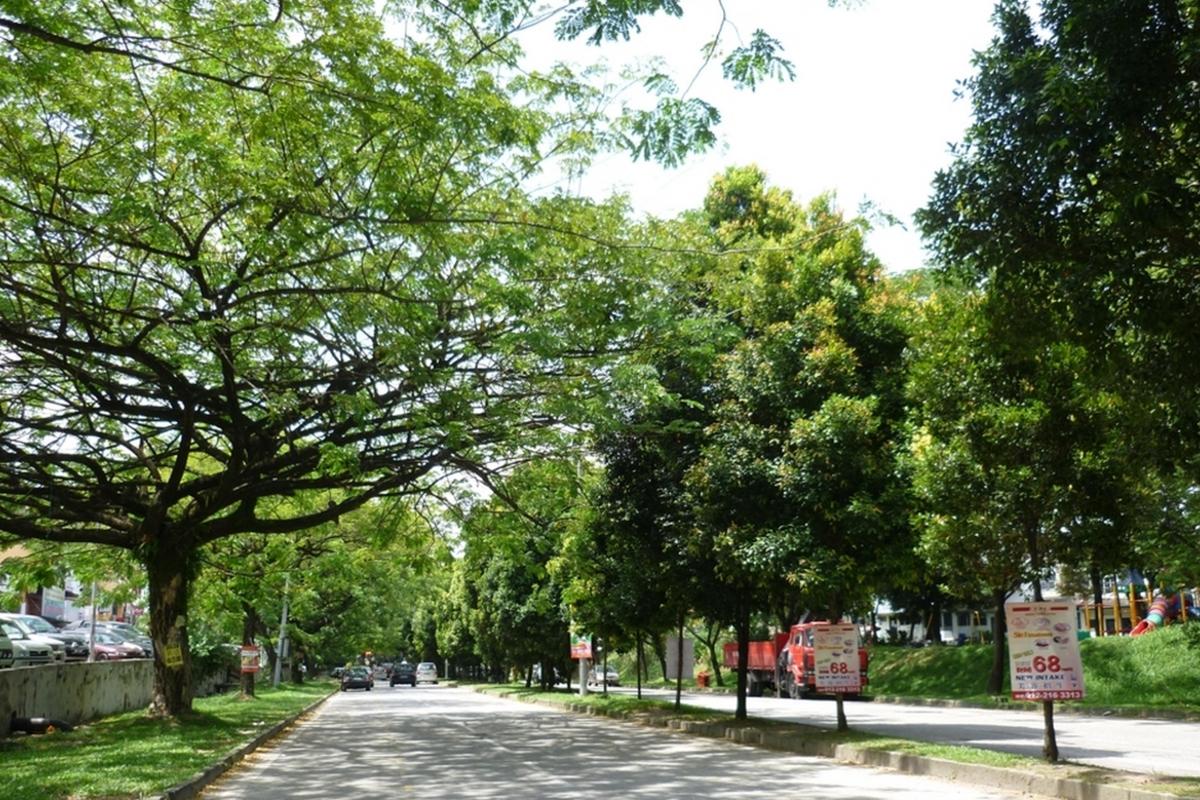 Taman Bukit Maluri Photo Gallery 3