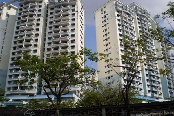 Vista Komanwel's cover picture