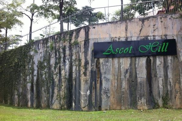 Ascott Hill's cover picture