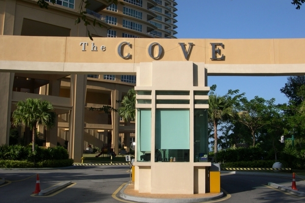 The Cove's cover picture