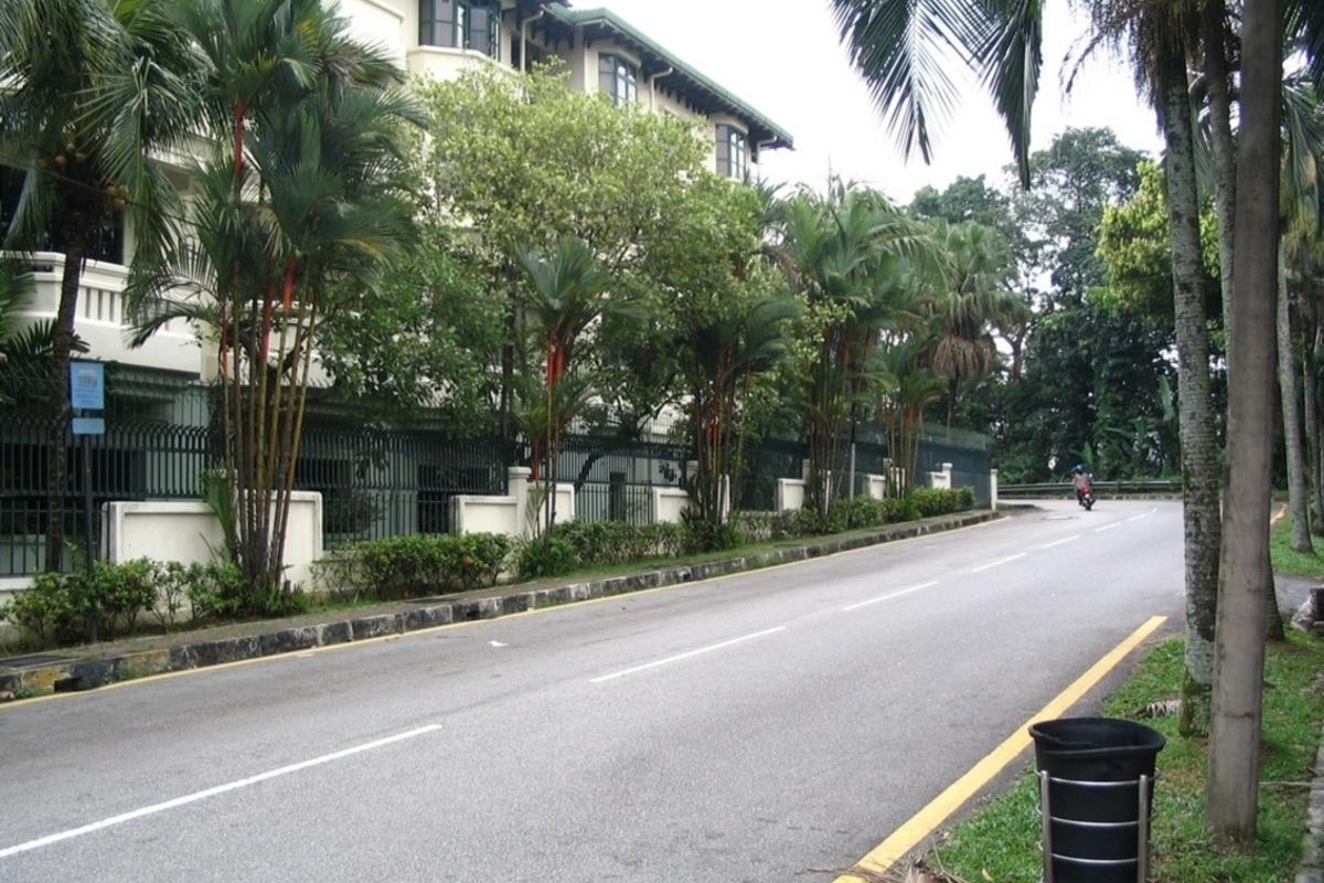 Bukit Ledang Photo Gallery 9