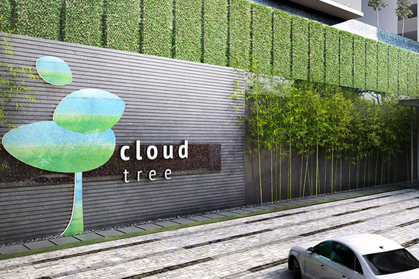 CloudTree's cover picture