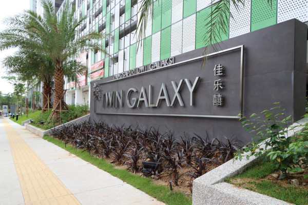 Twin Galaxy's cover picture