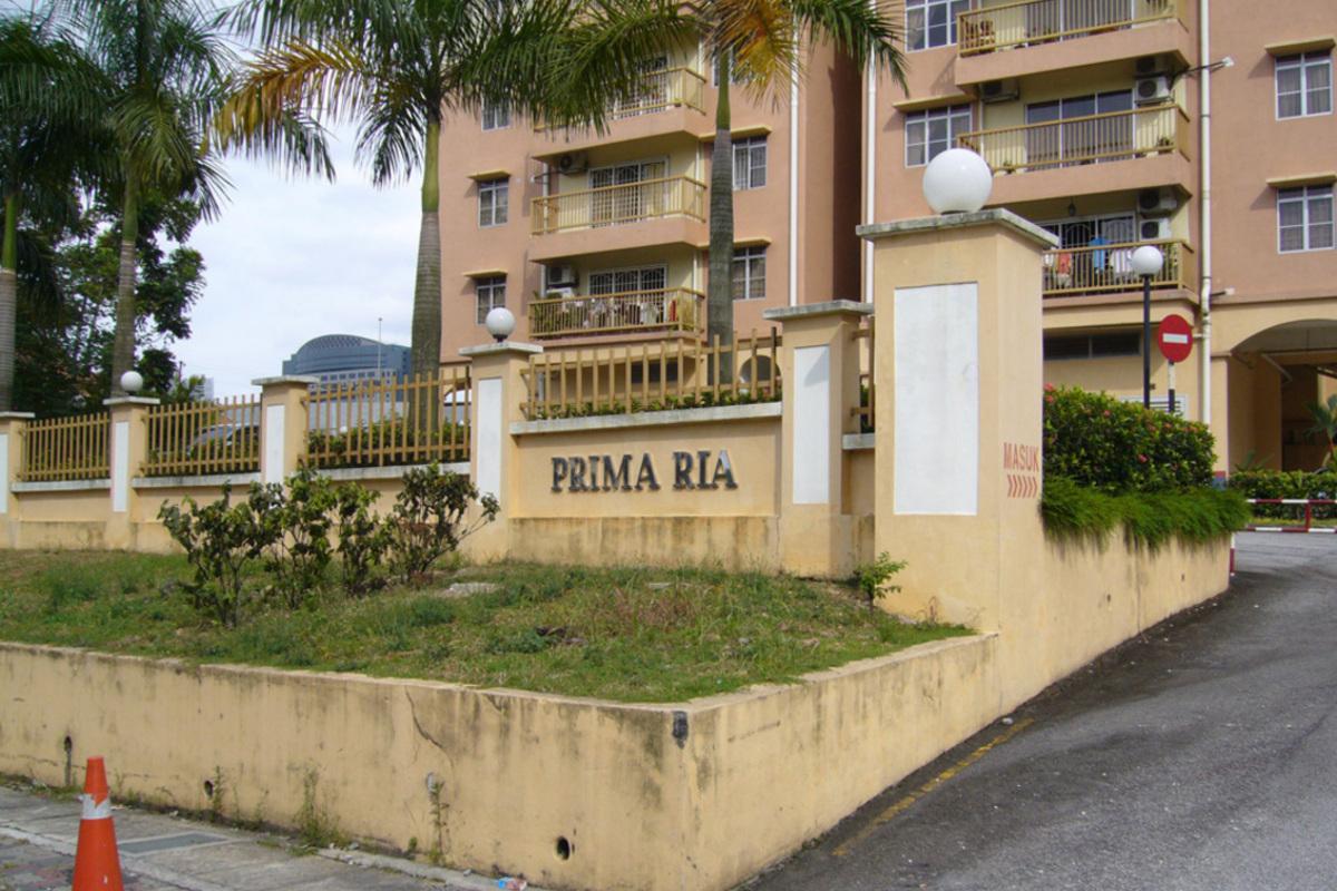 Prima Ria Photo Gallery 2