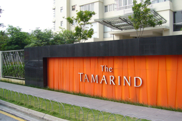 The Tamarind's cover picture