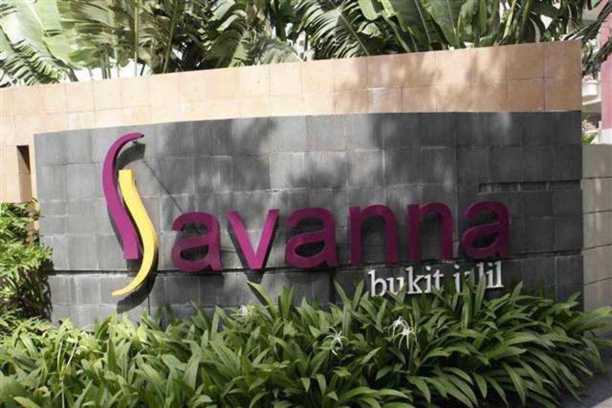 Savanna 2 Photo Gallery 0