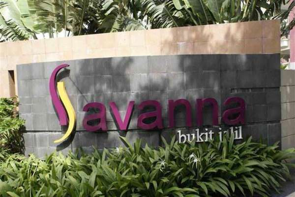 Savanna 2's cover picture