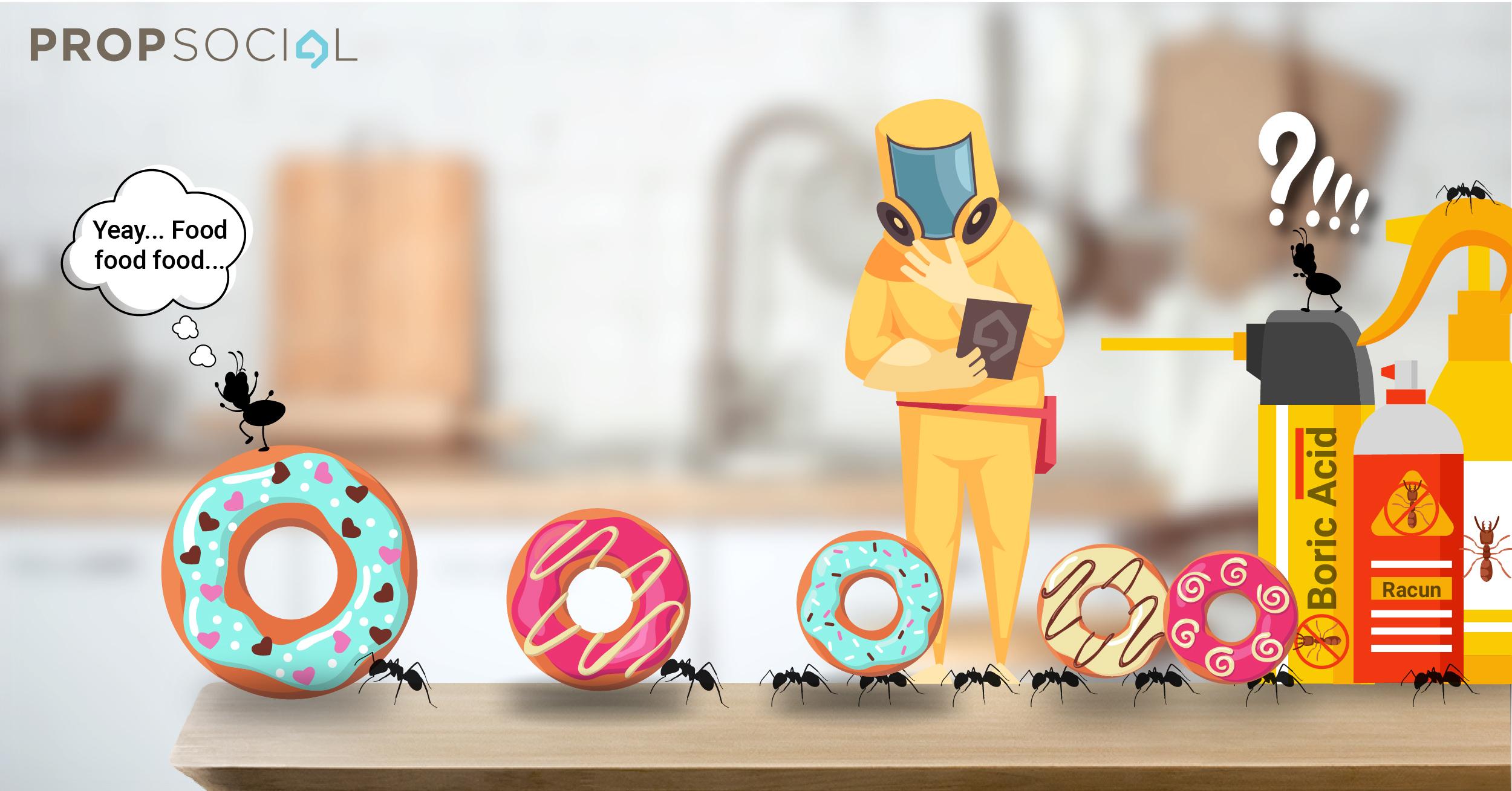 Ants 01