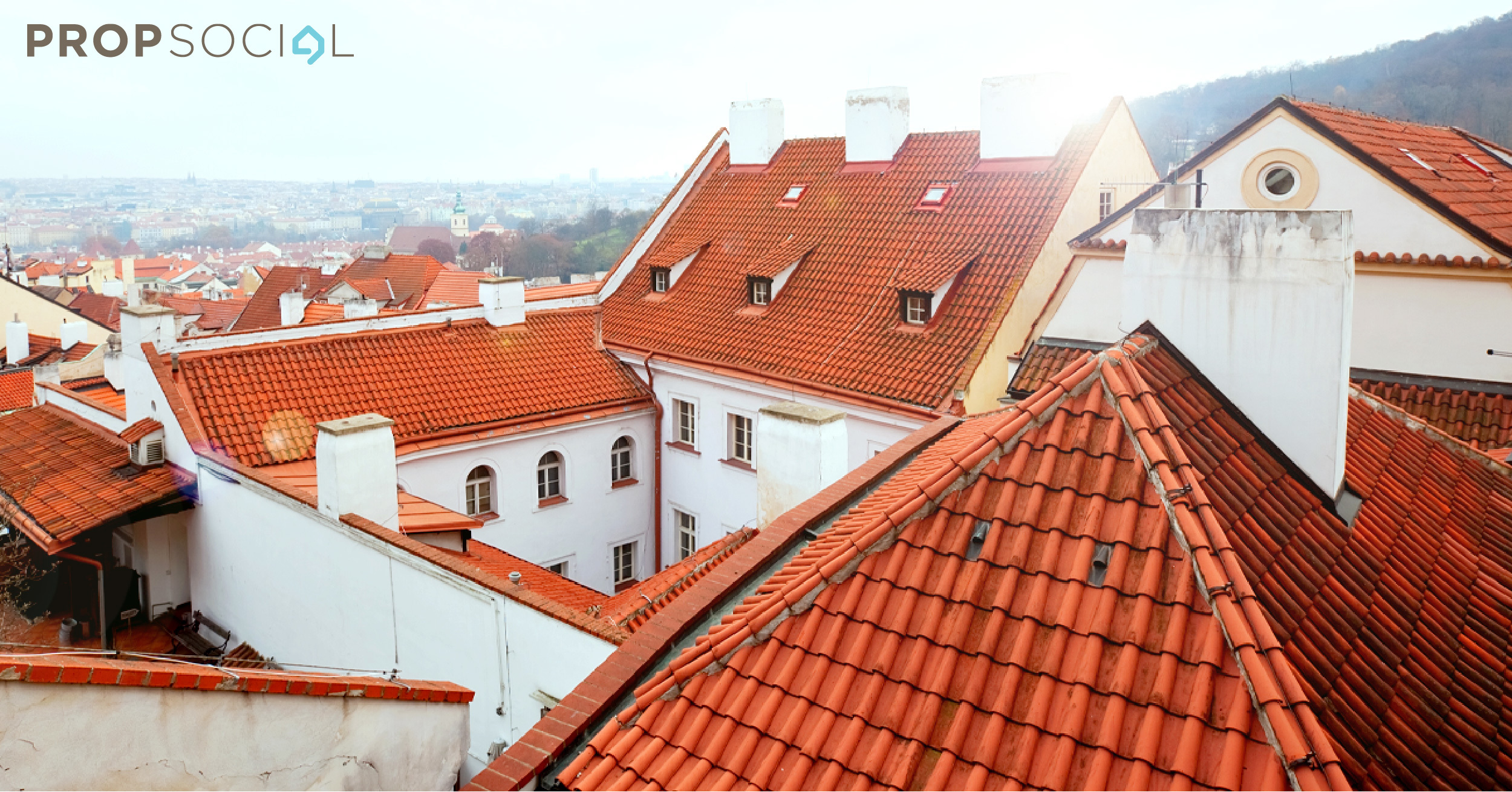 Roof 01