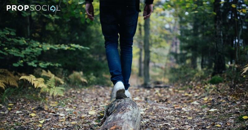 Articles hiking trails 2500a truncate