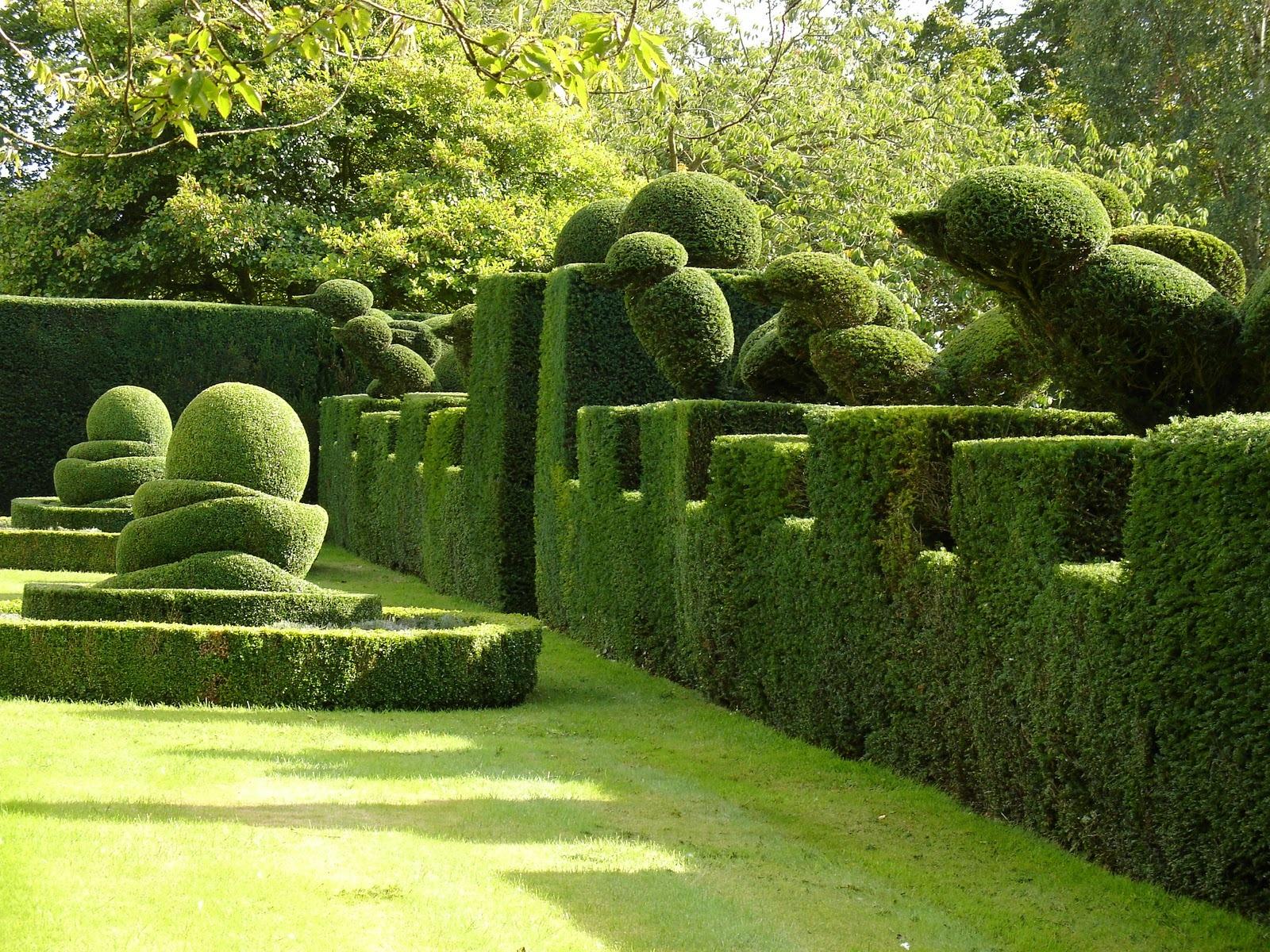 Topiary home garden decor propsocial1