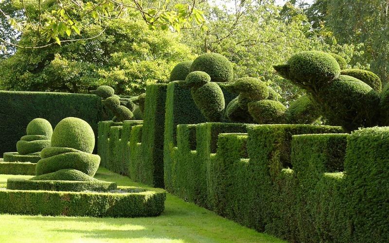 Topiary home garden decor propsocial1 truncate