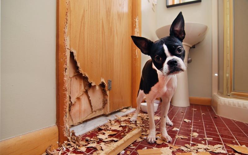 Problematic tenant truncate