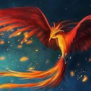 Importance of phoenix small